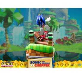 Figurine Sonic Generations - Sonic The Hedgehog vs Chopper Diorama 5