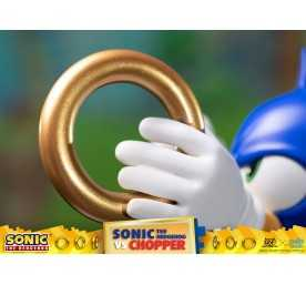 Figurine Sonic Generations - Sonic The Hedgehog vs Chopper Diorama 17