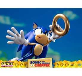 Figurine Sonic Generations - Sonic The Hedgehog vs Chopper Diorama 20