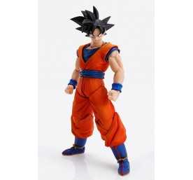 Figura Tamashii Nations Dragon Ball Z - Imagination Works Son Goku